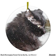 Black Norwegian Forest Cat in the Snow Ornament.. My Sabrina's ornament is my latest sell on Zazzle.... I have a huge selection of ornaments to chose from or you can request your own!