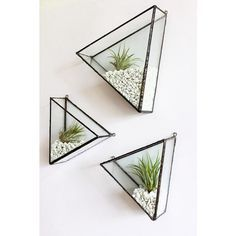 """These charming handmade triangles are amazing, perfect home for air plants @montibymonti Mix n match with another shape to create your own geometric…"""