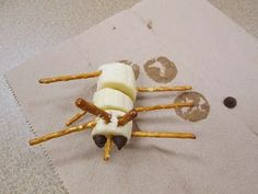 Mrs. Karen's Preschool Ideas: Let's Eat an Insect!