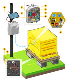 Learn how to pull realtime sensor data from a beehive to monitor its weight, temperature, and humidity over the internet.