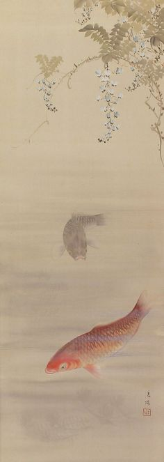 A Pair of Carp Koi Fish. Nakayama Koyo (1717−1780). Japanese hanging scroll kakejiku.