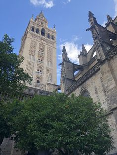 Let's go on an adventure! South Of Spain, Seville, Malaga, Tower Bridge, Barcelona Cathedral, To Go, Adventure, Travel, Wine Cellars