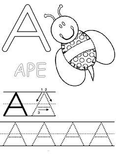 82 Best Italiano Images Italian Alphabet Day Care Primate