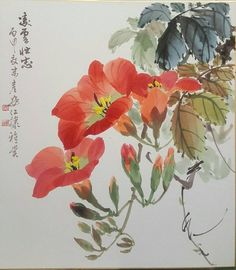 Trumpet, Watercolor Paintings, Vines, Drawings, Flowers, Asian, Easy Drawings, Water Colors, Trumpets