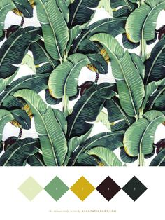 Colour Study - Martinique Chic — Ava Stationery