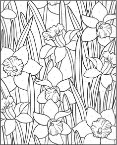 Creative Haven FLORAL DESIGNS PAINT BY NUMBER  by: Jessica Mazurkiewicz -  Dover Publications COLORING PAGE 1