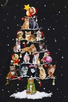 Would make a very cute card Christmas Scenes, Noel Christmas, Christmas Animals, Christmas Cats, Vintage Christmas, Xmas, I Love Cats, Crazy Cats, Cute Cats