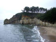 鵜飼いのための海鵜(ウミウ)の捕獲が日本で唯一許可されている鵜の岬がある(鵜は保護鳥。1947年一般保護鳥に指定)