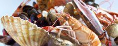 Ondine Restaurant Edinburgh: Seafood and Shellfish Restaurant, Edinburgh Restaurants, Edinburgh City Restaurants