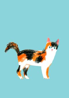 Animal illustrations - Guestpinner @happymakersblog - llustrator: Linette No #kidsdinge