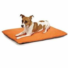 Insect Shield Reversible Dog Bed-Carrot