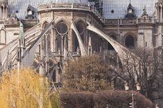 The Gothic Style - Building Characteristics: Flying Buttresses and High Walls. WEEK 12