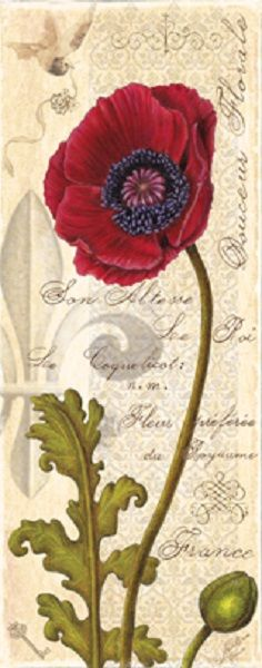 Antique Poppy II (Marie Elaine Cusson)