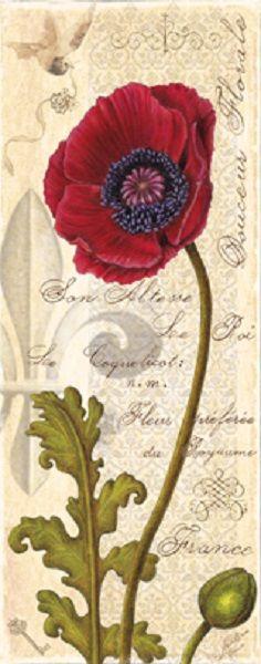 Antique Poppy II (Marie Elaine Cusson)
