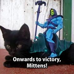 Skeletor toy riding a kitten, this is so cute!                              …