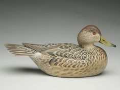 Decorative greenwing teal hen, Ward Brothers, Crisfield, Maryland. Signed and dated 1967. Slightly turned head. Raised carved wingtips and fanned tail.