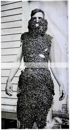 Beard of Bees Antique Vintage Photograph by TheArtisansShoppe
