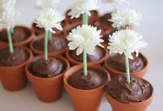 Ta-daaaaa! Stunning to look at delicious to taste... so is the combination of a small pot based cupcake, chocolate frosting and a fresh flower in a straw.