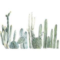 Cactus Watercolor Print by Fox Hollow Design