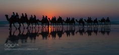Broome_2 by picalbi  Australia Broome Camel beach beautiful camels caravan ocean sand seascape summer sun sunset travel p