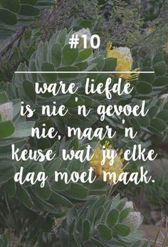 Ware liefde Godly Marriage, Love And Marriage, Qoutes, Funny Quotes, Life Quotes, Afrikaanse Quotes, Queen Quotes, Book Of Life, Morning Quotes