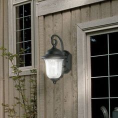 Studenburg 1-Light Outdoor Wall Lantern