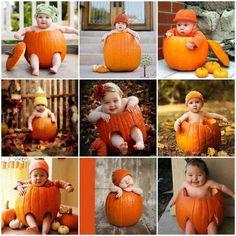 Pumpkin Cherubs