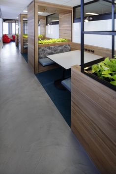 panDOMO Loft floor in concrete grey for UTS Insearch by Honestone.com.au…