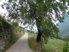 Sentiero verso Tenno