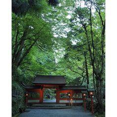 【automoone】さんのInstagramをピンしています。 《* * 貴船神社 奥宮 * 濾過された空気が潜む場所 * 妖怪がいても、 妖精がいても、 不思議ではない * 肺に満ちた温度を記憶して 夏のダルさをリセットする * * #京都#貴船神社#貴船神社奥宮 #森 #lovers_nippon #旅人の交換日記  #icu_japan #team_jp_ #instagood  #as_archives #iigers #japan》