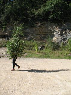 Land Art, Country Roads, Naturaleza