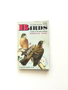 Vintage Golden Nature Guide: Birds #bertram #bergamot #etsy #vintage #book #homeschool #golden #nature #guide #fieldguide #birds #ornithology #birding #birder #birdwatching