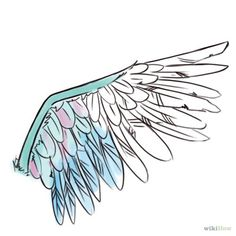 How to draw wings: