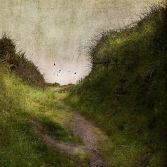 ☼ Painterly Landscape Escape ☼ landscape painting by Jamie Heiden Abstract Landscape, Landscape Paintings, Paintings I Love, Art Plastique, Painting Inspiration, Painting & Drawing, Art Photography, Street Art, Art Gallery