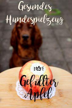 #Leckerli für #Hunde... Snackball mit Zinkfüllung, nicht nur für Barfer