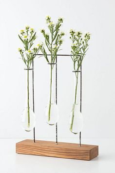 When spring arriives we all need a Hhrizontal chemist vase..