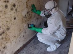 Pintail D&C Inc. is an affordable mold removal company, offering the best services in Katy TX. Call us to know about our water damage services and mold removal service. Wet Basement, Flooded Basement, Septic Inspection, Mold Cleanup, Water Flood, Get Rid Of Mold, Remove Mold, Cleaning Mold, Emergency Water