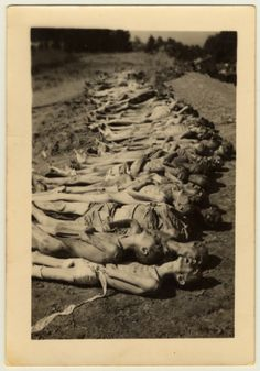 View of a row of corpses awaiting burial in the Mauthausen concentration camp following liberation. [Photograph #70154] Date: Tuesday, May 01, 1945 Locale: Mauthausen, [Upper Austria] Austria Photographer: Geroge Pippin
