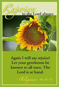 """Bible verse: Philippians 4:4-5 """"Again I will say Rejoice! Let your gentleness be known to all men. The Lord is at hand."""""""