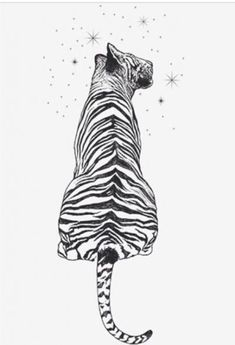 We have been doing phraseless illustrations for the past couple of weeks. This illustration is of a tiger gazing up at the stars of a universe much larger than itself. It is that hopeful curiosity we all have, wanting a life that fulfills our dreams and l Tiger Illustration, Animal Drawings, Art Drawings, Tattoos Lindas, Tiger Drawing, Tiger Sketch, Tattoo Zeichnungen, Forearm Tattoos, Tattoo Arm