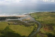 cebe south africa - Google Search