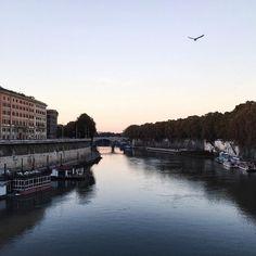 Tiber // #Tevere #Rome    ____________________