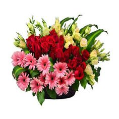 http://www.lovenwishes.com/flowers-to-gurgaon.htm