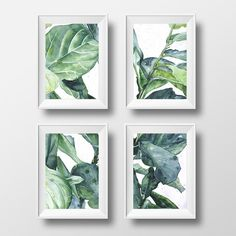 set of 4 prints, tropical art, botanical illustration - 3 sizes available Giclee print