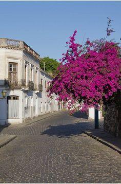 URUGUAY # 1 - Colonia del Sacramento Places Around The World, Travel Around The World, Around The Worlds, Bolivia, Sacramento, Cool Places To Visit, Places To Go, Jamaica, Cities