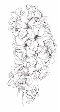what beautiful flowers she draws...