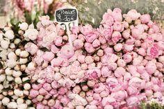 """Peony Heaven"" (Georgianna Lane: Paris Elegance - Fleurs)"
