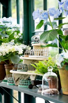 Have a serious green thumb? You need a she shed filled to the brim with gardening tools.
