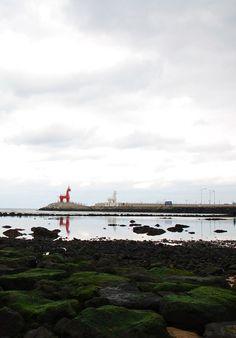이호테우해변, 제주도, 2011.12.31