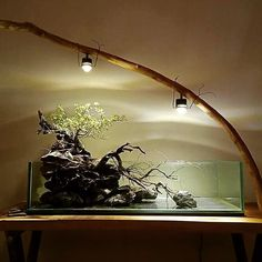 DAMMMNN what a nice hardscape only two words stylish and original ••• Crédits